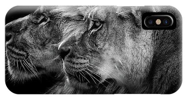 Lion iPhone Case - Lion And  Lioness Portrait by Laurent Lothare Dambreville