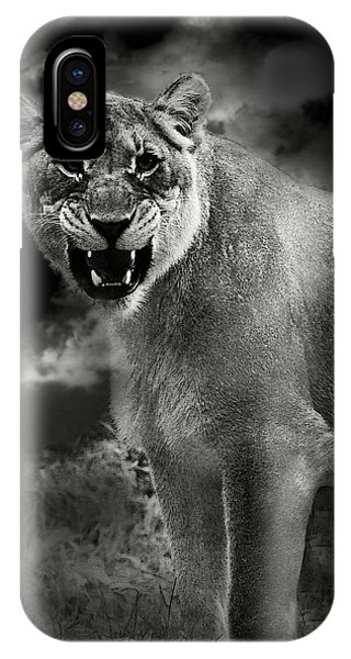 Lion IPhone Case