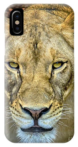 IPhone Case featuring the photograph Lion Closeup by David Millenheft