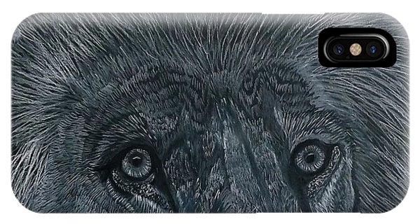 Lion Eyes  African King Detail IPhone Case