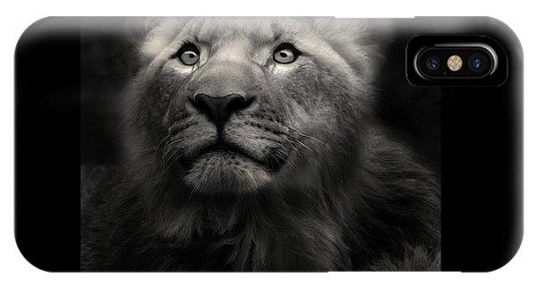 Lion In The Dark IPhone Case