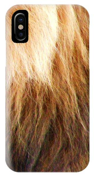 Lion Mane IPhone Case
