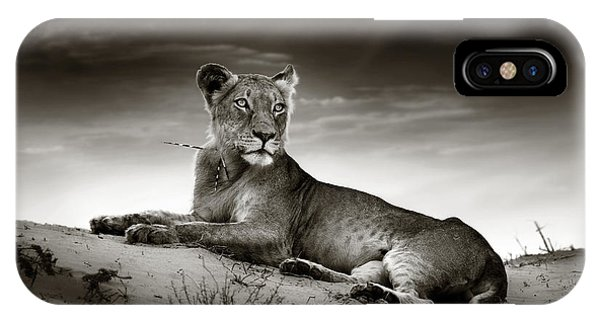 Monochrome iPhone Case - Lioness On Desert Dune by Johan Swanepoel