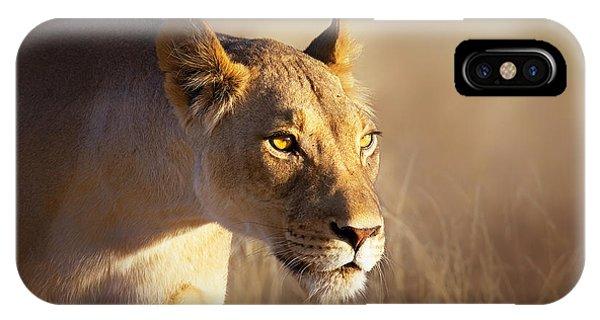 Lioness Portrait-1 IPhone Case