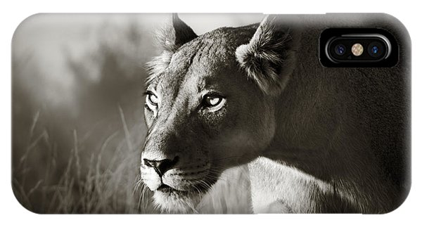 Animals iPhone Case - Lioness Stalking by Johan Swanepoel
