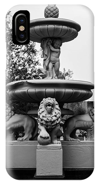 Lion's Fountain Phone Case by Nathan Hillis