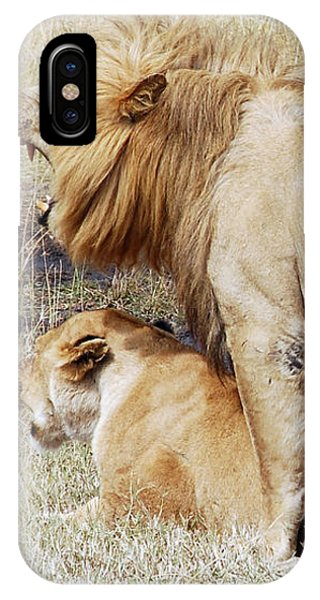 Lions Mating IPhone Case
