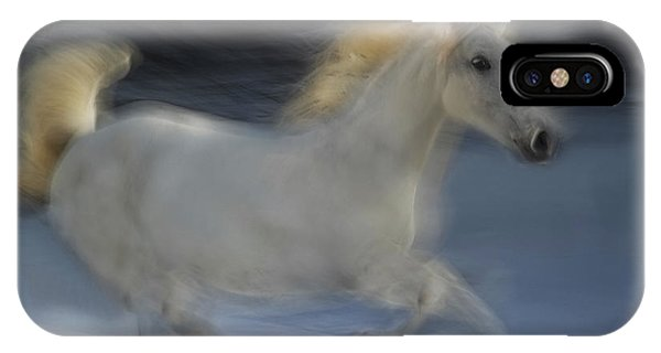 White Horse iPhone Case - Lipicanka by Milan Malovrh