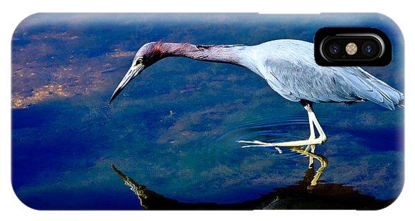 Little Blue Heron Fishing IPhone Case