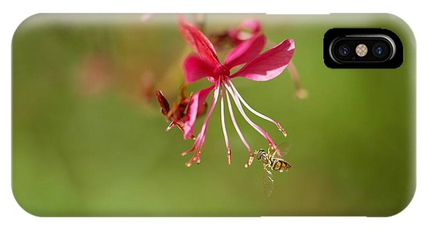 Little Things iPhone Case - Little Bug On The Tip Of A Flower by Jeff Swan
