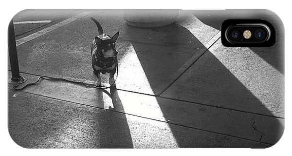 Little Dog Big Shadow IPhone Case