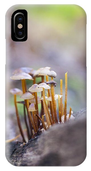 Little Fungi World IPhone Case