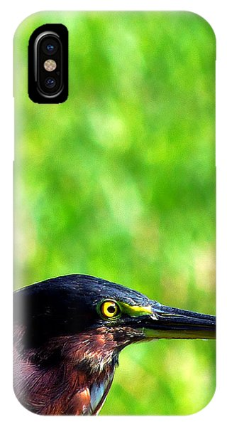 Little Green Heron 006 Phone Case by Chris Mercer