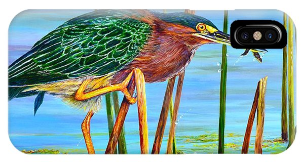 Little Green Heron IPhone Case
