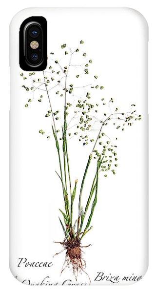 Little Quaking Grass IPhone Case