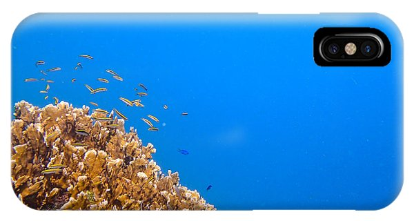 Little Reefers IPhone Case
