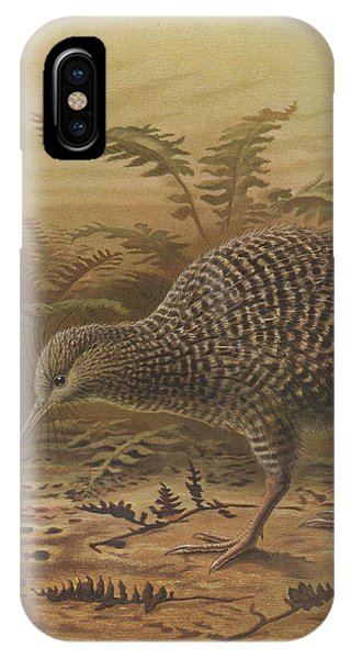Little Spotted Kiwi IPhone Case