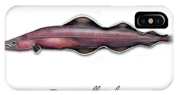 Living Fossil Eel - Protoanguilla Palau IPhone Case