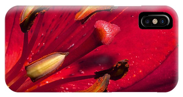 Living Inside A Lily IPhone Case
