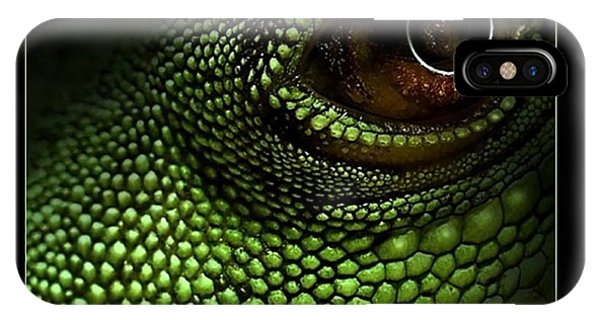 Lizard Eye IPhone Case