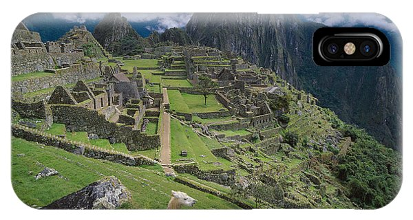 Llama iPhone Case - Llama At Machu Picchus Ancient Ruins by Chris Caldicott