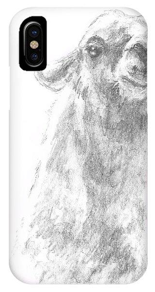 Llama Close Up IPhone Case