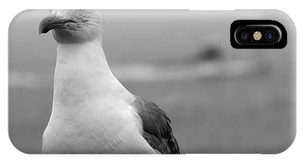 Lobster Boat Gull IPhone Case