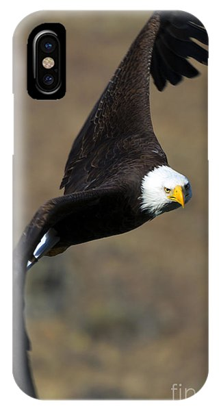 Avian iPhone Case - Locked In by Mike  Dawson