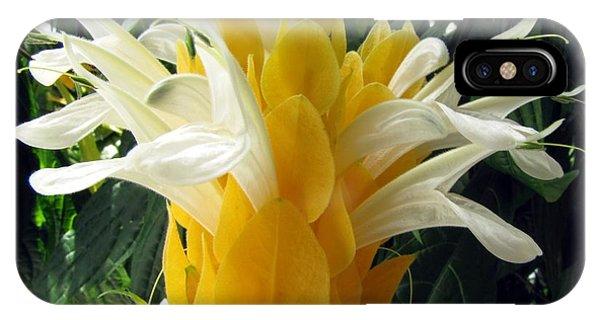 Lolliepop Plant IPhone Case