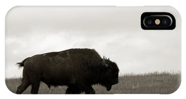 Lone Bison IPhone Case