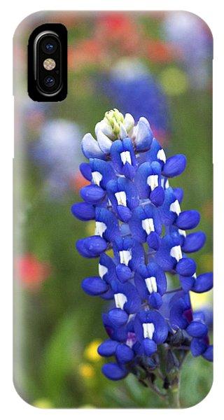 Lone Bluebonnet IPhone Case