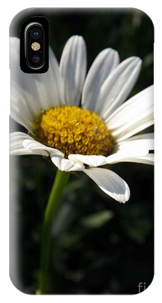 Lone Daisy IPhone Case