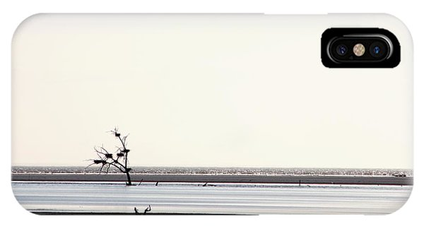 Lone Dead Tree Sustains Nests Of New Life IPhone Case