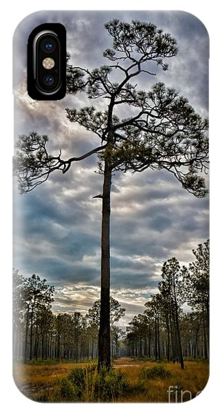 Lone Pine IPhone Case
