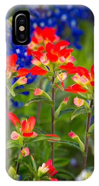 American West iPhone Case - Lone Star Blooms by Inge Johnsson