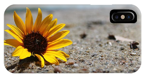 Lone Sunflower IPhone Case