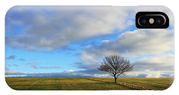 Lone Tree At Epsom Downs Uk IPhone Case