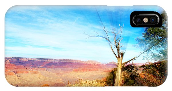 Lone Tree Canyon IPhone Case