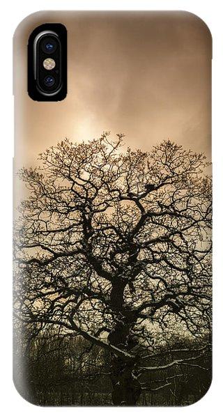 Tree iPhone Case - Lone Tree by Amanda Elwell