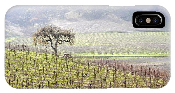 Lone Tree In The Vineyard IPhone Case