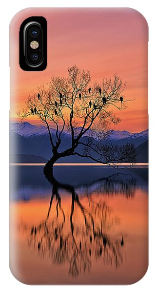 Clear iPhone Case - Lone Tree Is Not Lonely by Mei Xu