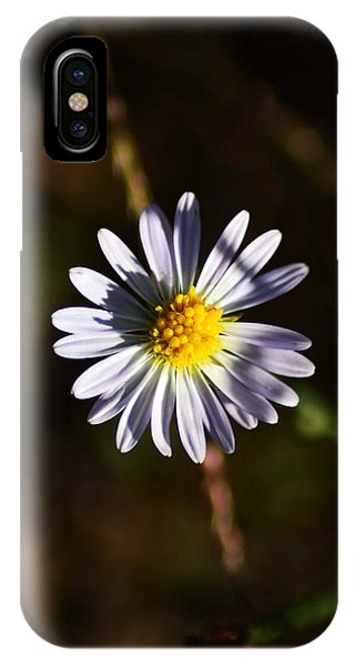 Lonely Flower Phone Case by Phillip Segura