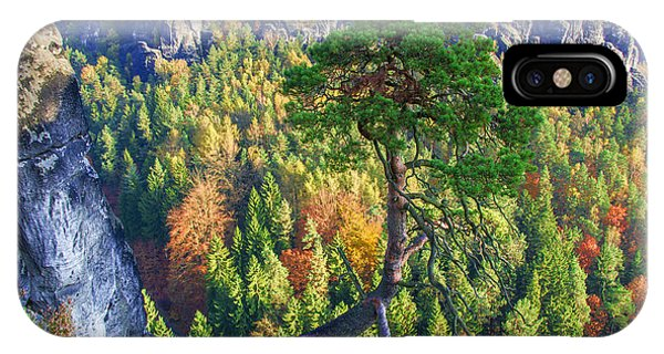 Lonely Tree In The Elbe Sandstone Mountains IPhone Case