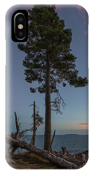 Alive iPhone Case - Lonely Tree Overlooking The Ocean by Michael Ver Sprill