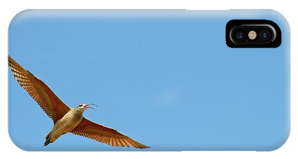 Long-billed Curlew In Flight IPhone Case