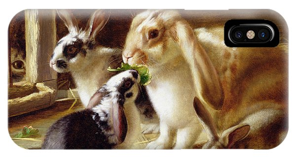 Lettuce iPhone Case - Long-eared Rabbits In A Cage Watched By A Cat by Horatio Henry Couldery