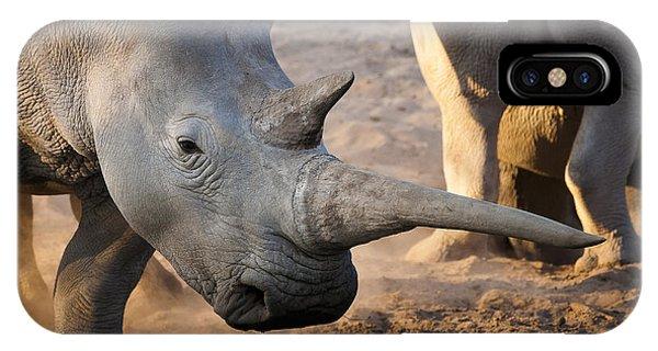 Rhinocerus iPhone Case - Long Horn by Andy-Kim Moeller