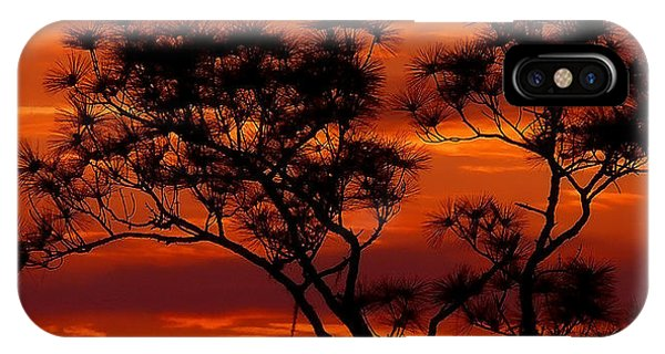 Long Leaf Pine IPhone Case