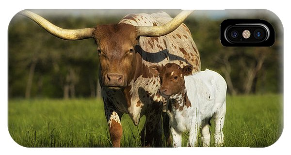 Longhorn And Calf IPhone Case