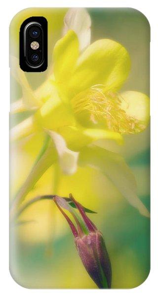 Aquilegia iPhone Case - Longspur Columbine (aquilegia Longissima) by Maria Mosolova/science Photo Library
